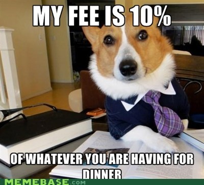 10 dinner fee Lawyer Dog Memes - 6129688576