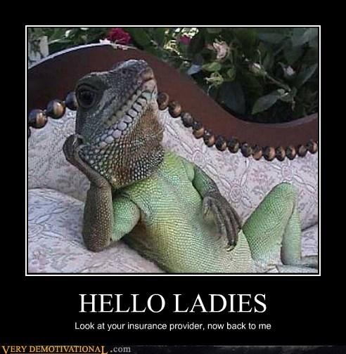gecko GEICO hilarious insturance lizard - 6129964544