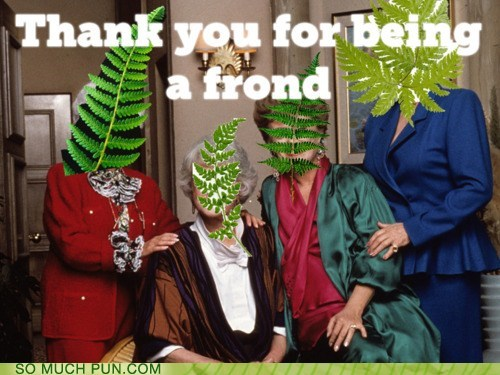being,friend,frond,golden girls,literalism,lyrics,similar sounding,thank you,Theme Song