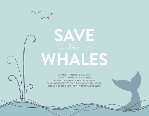 infographics about why and how to save endangered species