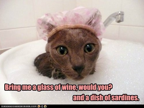 bath,bathing,bathing cap,baths,bubbles,calm,cat,Cats,fancy,fish,relax,sardines,water,wine