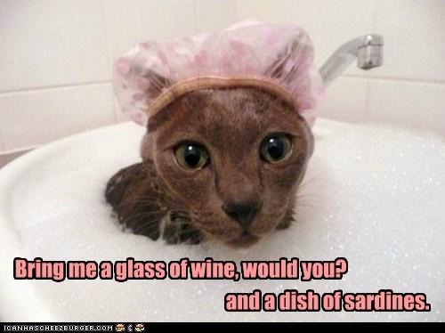 bath bathing bathing cap baths bubbles calm cat Cats fancy fish relax sardines water wine - 6131167232