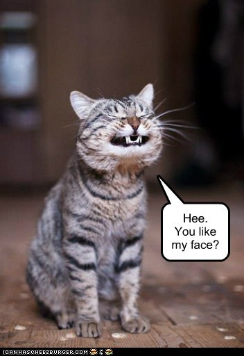 Hee. You like my face?