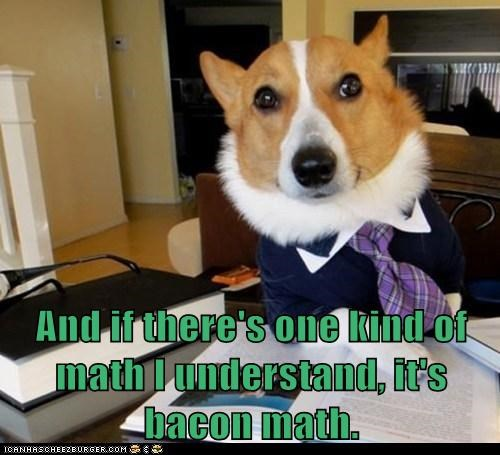 bacon corgi dogs dog lawyer math - 6131852032