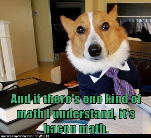 bacon corgi math - 6131852032
