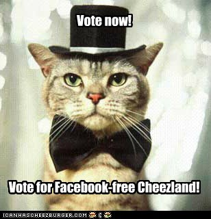 Vote now! Vote for Facebook-free Cheezland!