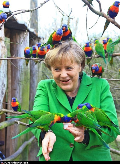 angela merkel,birds,cute,Germany,political pictures