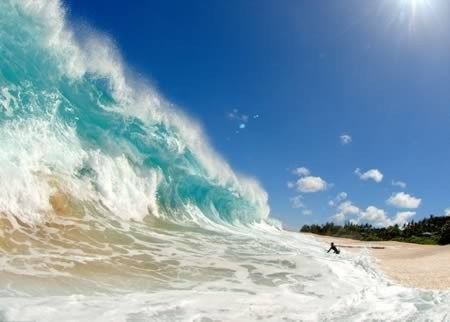 beach Hawaii surfing wave - 6132541440