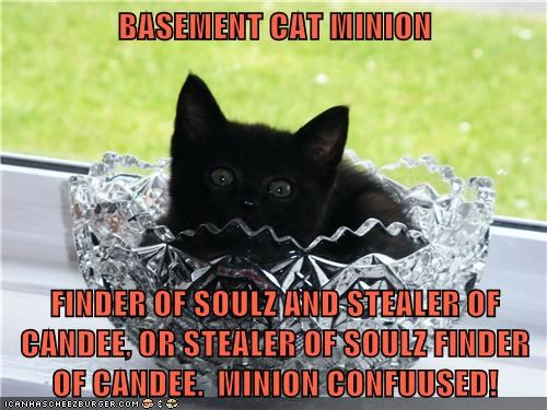 basement cat,candy,confused,minion,servant,soul,steal