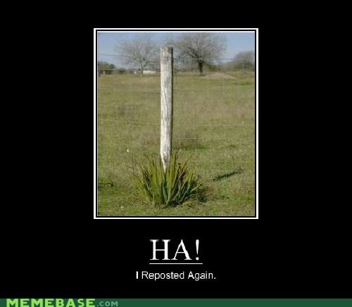 ha hilarious post pun repost Very Demotivatio very demotivational - 6133111040
