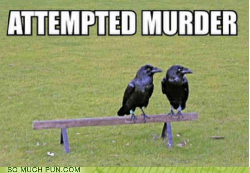 attempted,classic,crows,double meaning,Hall of Fame,literalism,murder,murder of crows