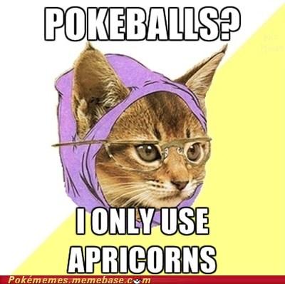 apricorns hipster cat meme Memes Pokeballs - 6133366528
