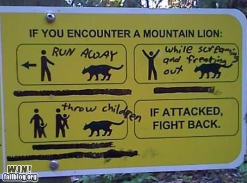 graffiti hacked irl Hiking mountain lion park safety - 6133474048