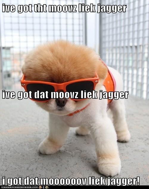 Cheezburger Image 6133859840