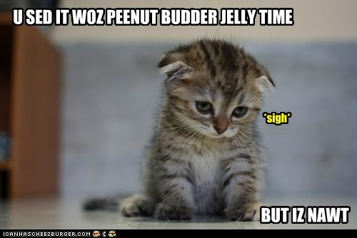 U SED IT WOZ PEENUT BUDDER JELLY TIME BUT IZ NAWT *sigh*