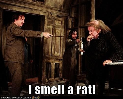 david thewlis Gary Oldman Harry Potter peter pettigrew professor lupin sirius black smell timothy spall - 6134563328