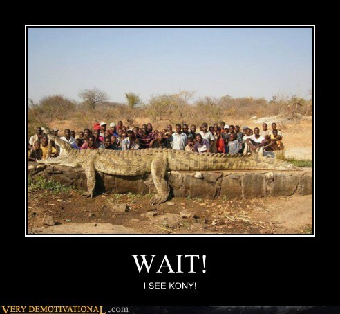 crocodile hilarious Kony wait wtf - 6135108608