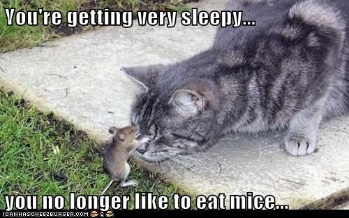 You're getting very sleepy... you no longer like to eat mice...