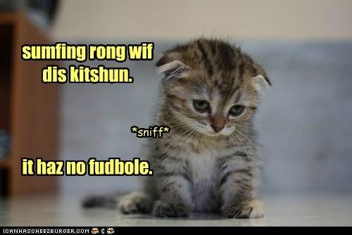 sumfing rong wif dis kitshun. it haz no fudbole. *sniff*