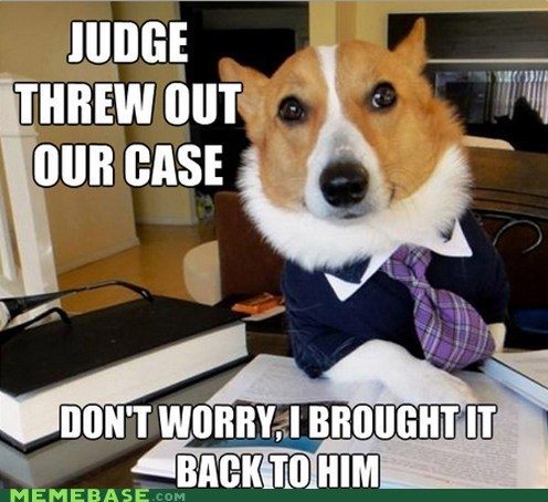 fetch,judge,Lawyer Dog,Memes,threw