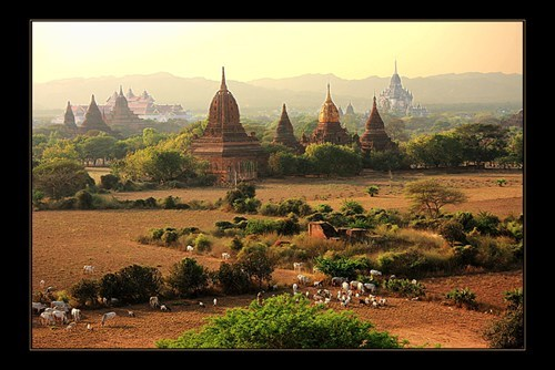 fields,myanmar,spirals