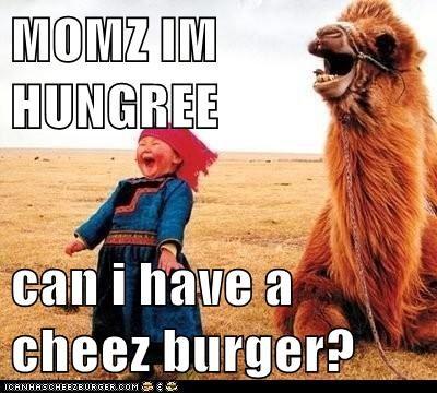 Cheezburger Image 6137330688