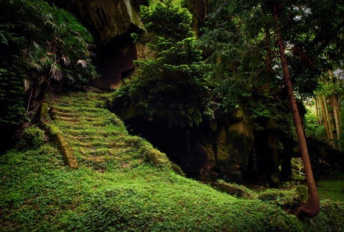 Japan moss stairs - 6137362176