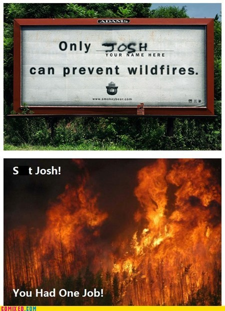 josh Smokey the Bear the internets wildfires