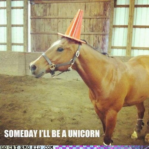 best of week,cone,delusional,horse,unicorn,weird kid