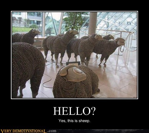 art,hello,hilarious,phone,sheep