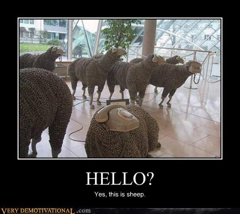 art hello hilarious phone sheep - 6138614784