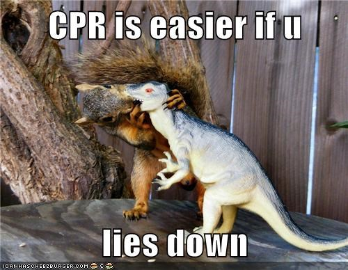 cpr,dinosaur,easier,lie down,practice,squirrel,toy
