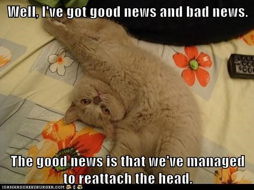 bad news best of the week Cats decapitation doctor good news head lolcats operation reattatch surgery - 6139056640