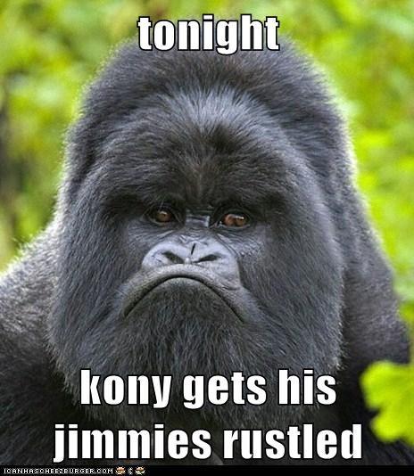 tonight  kony gets his jimmies rustled