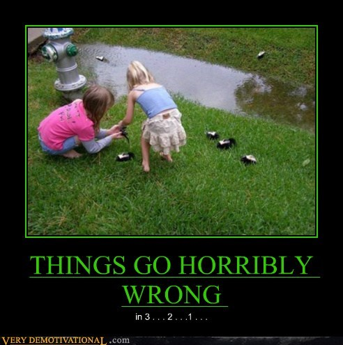 hilarious horribly wrong skunks wtf - 6139773952