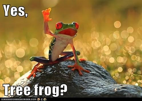 answer call class discussion frog raising your hand teacher - 6140488704