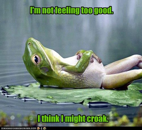 best of the week croak frog frogs green Hall of Fame lily pad lying down not feeling well puns sick - 6140633856