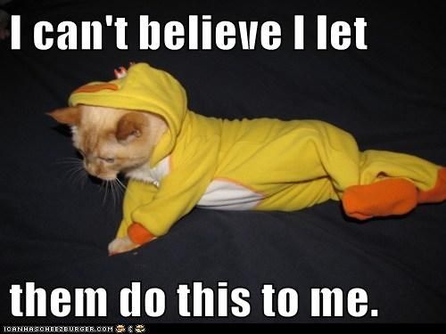 Cats costume dress up dressed up ducks Hall of Fame hate outfit people revenge why