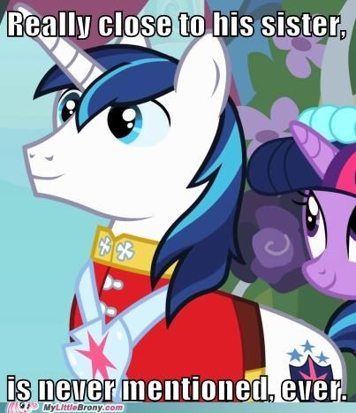 bbbff best friend forever big brother meme shining armor - 6141393408