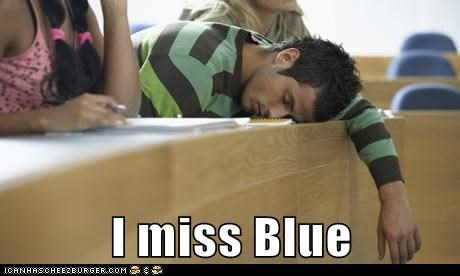 blue blues clues college Memes steve - 6141435136