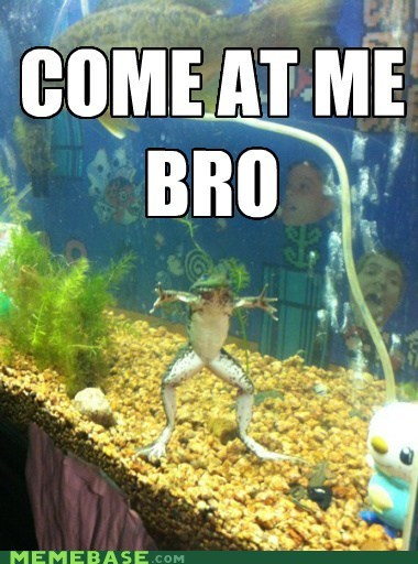 business come at me frog