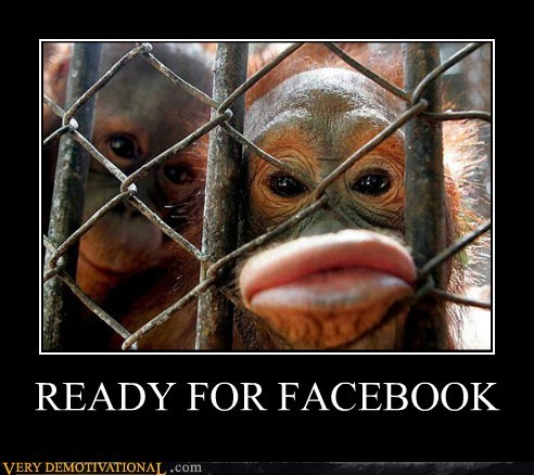 duckface facebook hilarious monkey wtf - 6143285248