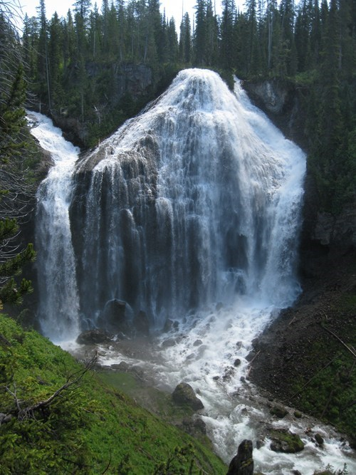 Forest Hall of Fame park waterfall yellowstone - 6143639552