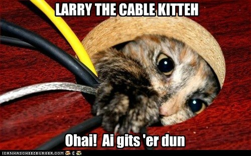 Cheezburger Image 6144172800