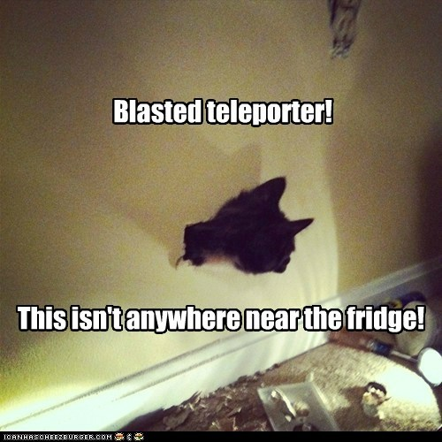 FAIL teleporter accident captions fridge Cats wall - 6144377856