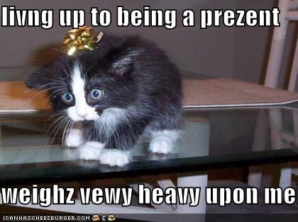 Cheezburger Image 614626560