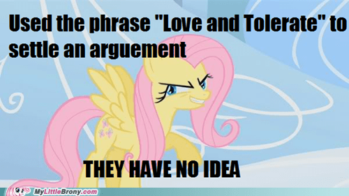 argument fluttershy IRL love and tolerate no clue - 6146892544