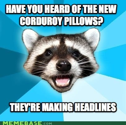 Lame Pun Coon pillows puns - 6147572736