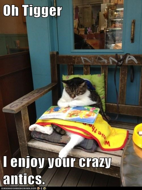 antics book enjoy literature read tigger winnie the pooh - 6148205568