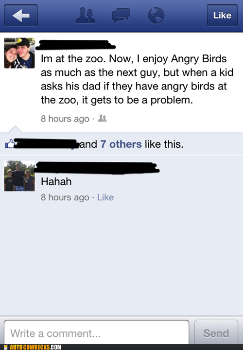angry birds birds going to the zoo kids these days - 6148293888